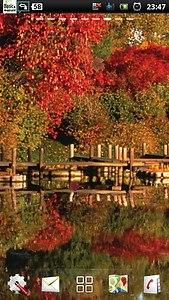 lake fall autumn LWP