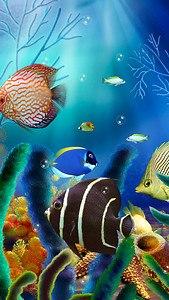 Aquarium Live Wallpaper (free)