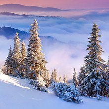 Amazing Winter Alps