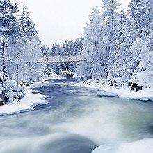 Siberian River