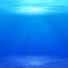 Underwater Calm