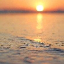 Ocean Focus