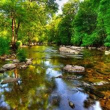 River Exe England