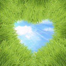 Grass Love Heart