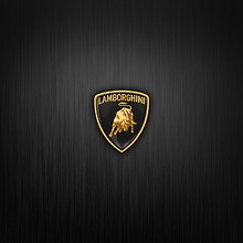 Lamborghini Badge Brushed Steel