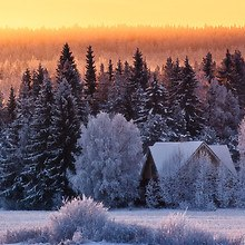Sunset Winter Background