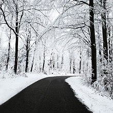 Cold Winter Road