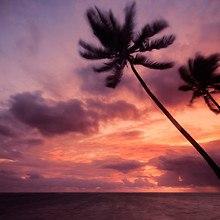 Beautiful Punta Cana