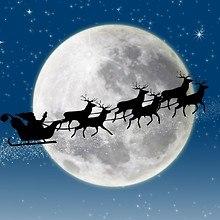 Reindeer Passing The Moon