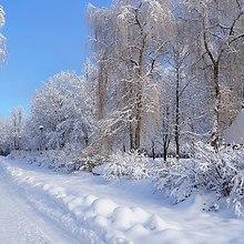 Russian Winter Road