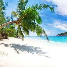 Palm Tree Hanging Over Beach