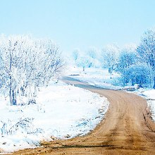 Road During Winter