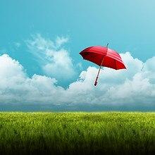Umbrella LG G2