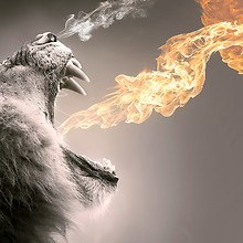 Flaming Roar