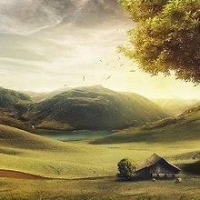Valley Dreams