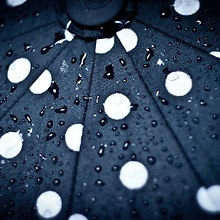 Umbrella Water Drops